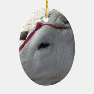 Ornamento De Cerâmica Retrato do Chianina, raça italiana do gado