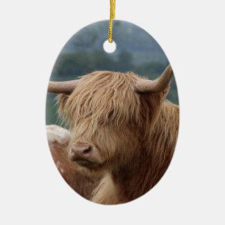 Ornamento De Cerâmica retrato do gado das montanhas