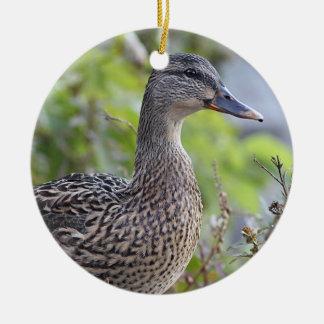 Ornamento De Cerâmica Retrato do pato do pato selvagem