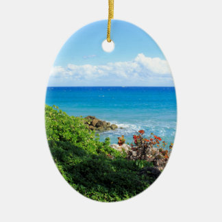 Ornamento De Cerâmica rocky-foliage-coast-deerfield-beach-4s6490
