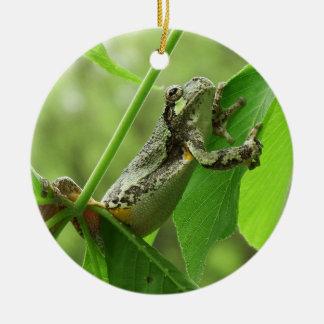 Ornamento De Cerâmica Sapo de árvore que pendura sobre