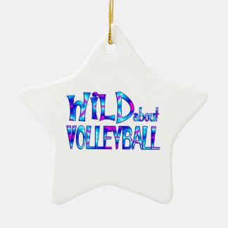 Ornamento De Cerâmica Selvagem sobre o voleibol