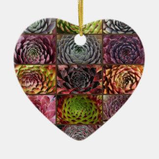 Ornamento De Cerâmica Sempervivum - Houseleek - Hauswurz - colagem