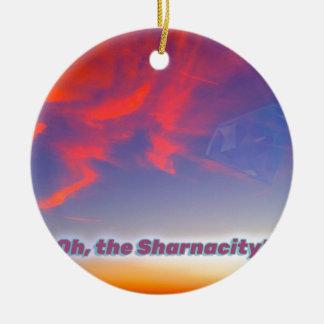 Ornamento De Cerâmica Sharnacity