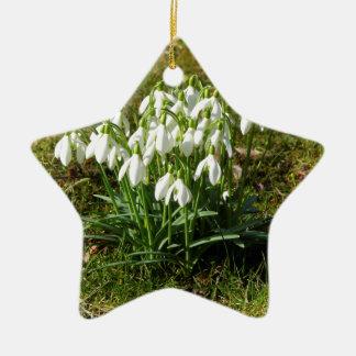Ornamento De Cerâmica Snowdrops 02,2 (Schneegloeckchen)