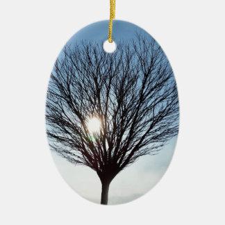 Ornamento De Cerâmica sol do inverno