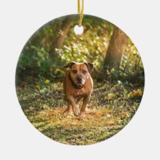 Ornamento De Cerâmica Staffordshire bull terrier