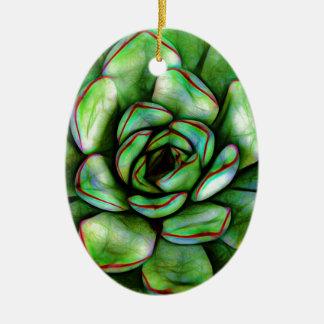 Ornamento De Cerâmica Succulent gráfico