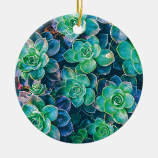 Ornamento De Cerâmica Succulents, Succulent, cacto, cactos, verde,