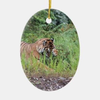 Ornamento De Cerâmica Tigeriffic