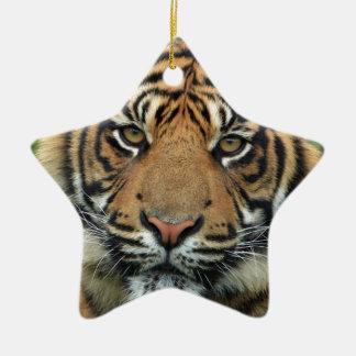 Ornamento De Cerâmica Tigre adulto