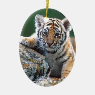 Ornamento De Cerâmica Tigre Cub do bebê