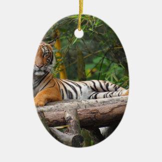 Ornamento De Cerâmica Tigre do Malay dos alugueres que Lounging no