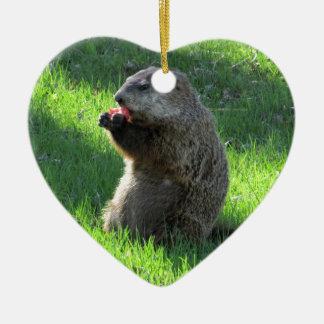Ornamento De Cerâmica Tomate Groundhog