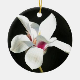 Ornamento De Cerâmica Tornar-se