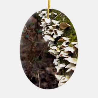 Ornamento De Cerâmica tree_moss_winter mushroom_downed