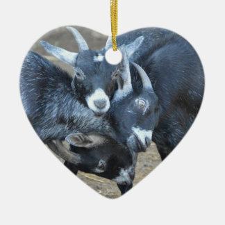 Ornamento De Cerâmica Três cabras que terminam o coração das cabeças