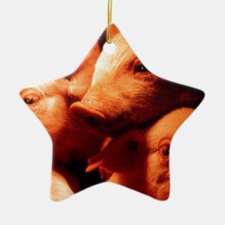 Ornamento De Cerâmica Três porcos pequenos