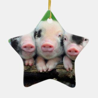 Ornamento De Cerâmica Três porcos pequenos - porco bonito - três porcos