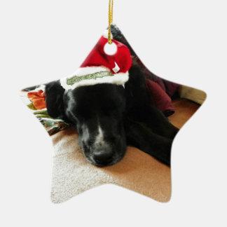 Ornamento De Cerâmica Um cão preto no Natal com seu chapéu do papai noel