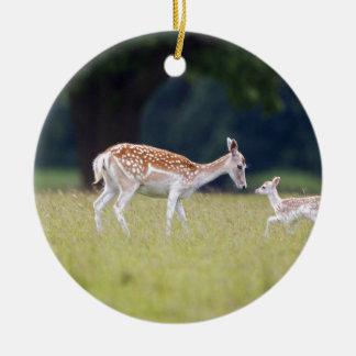 Ornamento De Cerâmica Um cervo de Fallow (gama) com jovem corça