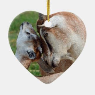 Ornamento De Cerâmica Um coração macio da cabra da mãe & do bebê do