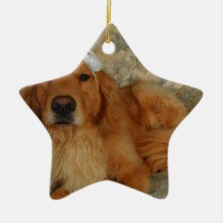 Ornamento De Cerâmica Um golden retriever no Natal com chapéu do papai