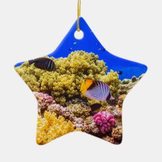 Ornamento De Cerâmica Um recife de corais no Mar Vermelho perto de
