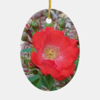 Ornamento De Cerâmica Um salmão simples coloriu aberto aumentou