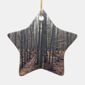 Ornamento De Cerâmica Uma floresta da faia na queda