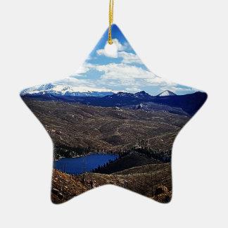 Ornamento De Cerâmica Uma ideia do pico de Pike