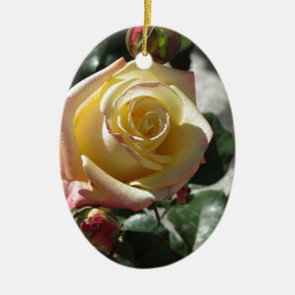 Ornamento De Cerâmica Única flor do rosa amarelo no primavera