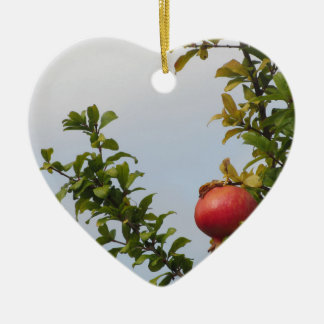Ornamento De Cerâmica Única fruta vermelha da romã na árvore nas folhas