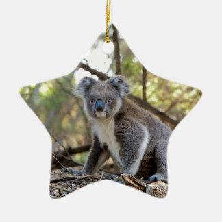 Ornamento De Cerâmica Urso de Koala cinzento e branco