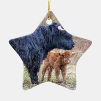 Ornamento De Cerâmica Vaca escocesa preta da mãe do escocês com