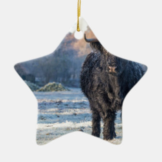 Ornamento De Cerâmica Vaca escocesa preta do escocês na paisagem do