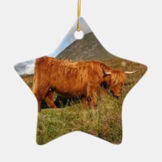 Ornamento De Cerâmica Vacas escocesas das montanhas - Scotland