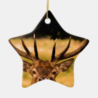 Ornamento De Cerâmica veado do parque de richmond