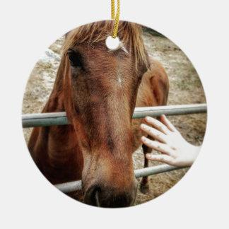 Ornamento De Cerâmica Vida do cavalo