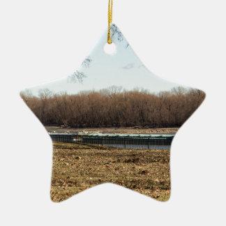 Ornamento De Cerâmica Vida do rio