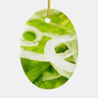 Ornamento De Cerâmica Vista macro das folhas do anel da alface e de