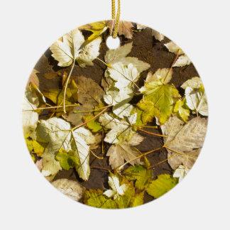 Ornamento De Cerâmica Vista superior das folhas de bordo molhadas de um