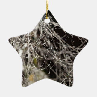 Ornamento De Cerâmica Web de aranha com gotas de orvalho