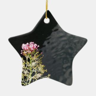 Ornamento De Cerâmica Wildflowers contra a superfície da água de um rio