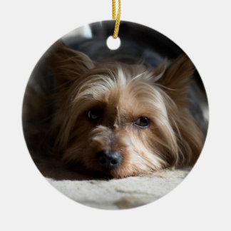 Ornamento De Cerâmica yorkhire/ornamento Terrier de seda
