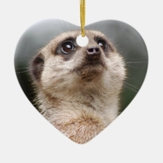 Ornamento de Meerkat