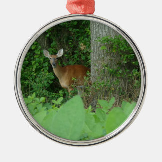 Ornamento De Metal 100_3076.JPG fotografou cervos de whitetail no