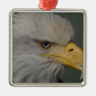 Ornamento De Metal Águia americana de Alaska EUA