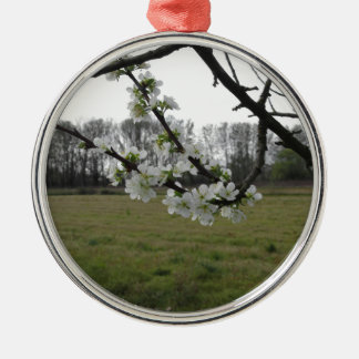 Ornamento De Metal Ameixa de florescência. Árvore branca de