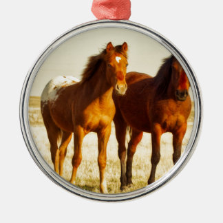 Ornamento De Metal Amigos do cavalo